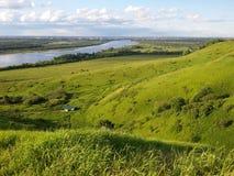 Zonovergoten groene vallei dichtbij de rivier Stock Fotografie