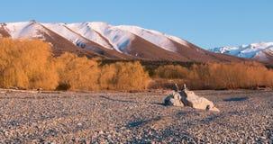 Zonovergoten wilgen en in evenwicht brengende rotsen op een meerkust bij vroeg Royalty-vrije Stock Foto
