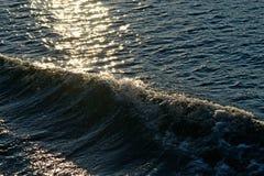 Zonovergoten zeegezicht met golven Royalty-vrije Stock Fotografie