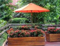 Zonparaplu in de tuin Stock Fotografie