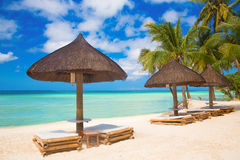 Zonparaplu's en strandbedden onder de palmen op tropisch strand Royalty-vrije Stock Foto's