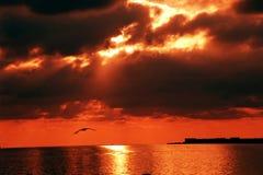 Zonsondergang. Royalty-vrije Stock Afbeeldingen