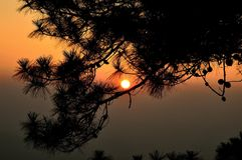 Zonsondergang en schaduw Stock Afbeeldingen