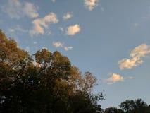 Zonsondergang aangestoken hemel Stock Fotografie