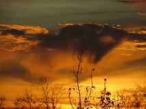 Zonsondergang, aard, zon-gesteunde vegetatie Stock Afbeeldingen
