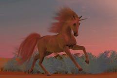 Zonsondergang Arabische Eenhoorn Royalty-vrije Stock Afbeelding