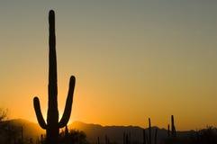 Zonsondergang in Arizona Royalty-vrije Stock Afbeeldingen