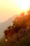 Zonsondergang bij berg, Phu Kra Dueng, Loei Stock Fotografie