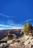 Zonsondergang bij de Grote Canion Royalty-vrije Stock Foto's