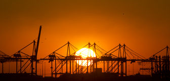 Zonsondergang bij de haven van Rotterdam, Holland Stock Foto