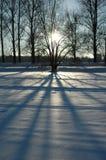 Zonsondergang bij de winter Royalty-vrije Stock Fotografie
