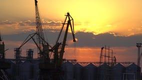Zonsondergang bij de zeehaven Stock Fotografie