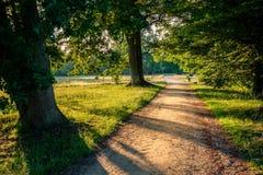 Zonsondergang bij een romantische weg in Duch-de zomerlandschap Twente Royalty-vrije Stock Foto's