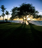 Zonsondergang bij hawaian strand royalty-vrije stock fotografie