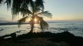 Zonsondergang bij het Caraïbische strand Royalty-vrije Stock Foto's