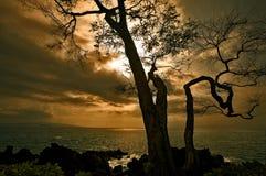 Zonsondergang bij het Eiland van Maui Stock Foto's