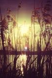 Zonsondergang bij het meer Stock Afbeelding