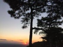 Zonsondergang bij het Nationale Park van Phu Kradueng Stock Foto