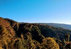Zonsondergang bij het noorden Indische heuvels, pijnboombomen royalty-vrije stock foto's