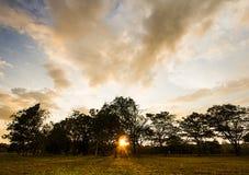 Zonsondergang bij het park Royalty-vrije Stock Afbeelding
