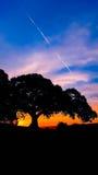 Zonsondergang bij het Park van de Waarnemingscentrumheuvel Royalty-vrije Stock Afbeeldingen