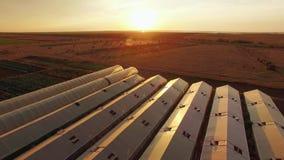 Zonsondergang bij Landbouwgebied met Serres stock footage