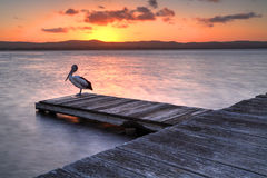 Zonsondergang bij Lange Pier, NSW Australië Royalty-vrije Stock Foto