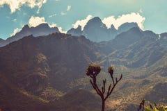 Zonsondergang bij Rwenzori-Bergen, Oeganda royalty-vrije stock afbeelding