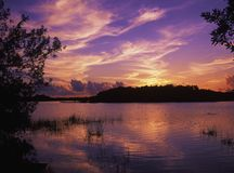 Zonsondergang bij Vijver Paurodus Stock Afbeelding