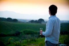 Zonsondergang bij wijngaard Royalty-vrije Stock Afbeelding