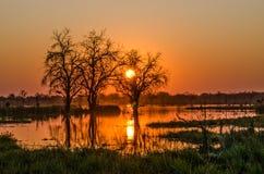 Zonsondergang in Botswana Royalty-vrije Stock Foto