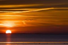 Zonsondergang boven валюшка het, море Wadden на заходе солнца стоковые фото