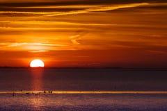 Zonsondergang boven валюшка het, море Wadden на заходе солнца стоковые изображения rf