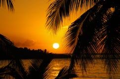 Zonsondergang in de Caraïben Stock Afbeeldingen