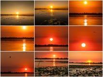 Zonsondergang in de Donau deltaroemenië Mooie blueishlichten in water Mooi zonsonderganglandschap van de Deltabiosfeer van Donau  stock afbeelding