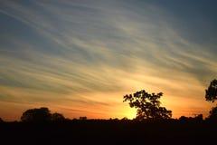Zonsondergang in de herfst stock foto