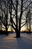 Zonsondergang in de winter Royalty-vrije Stock Fotografie
