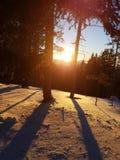 Zonsondergang in de winter royalty-vrije stock afbeelding