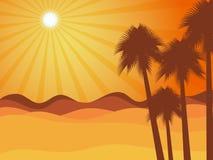 Zonsondergang in de woestijn met palm De woestijn van Judean Stock Foto's