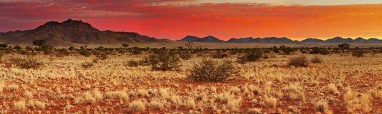 Zonsondergang in de Woestijn van Kalahari Stock Afbeeldingen