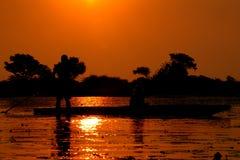Zonsondergang in Delta Okavango Royalty-vrije Stock Fotografie