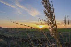 Zonsondergang dichtbij Tulenovo-dorp stock fotografie