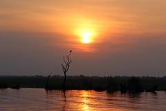 Zonsondergang die van het water wordt weerspiegeld Stock Afbeelding