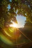 Zonsondergang in een klein park waarin de zon door de bomen glanst Royalty-vrije Stock Afbeelding