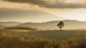 Zonsondergang in een platteland Stock Foto