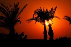 Zonsondergang in Egypte Royalty-vrije Stock Afbeeldingen