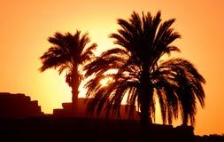 Zonsondergang in Egypte Luxor afrika stock foto