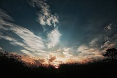 Zonsondergang en aard Royalty-vrije Stock Foto