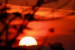 Zonsondergang en bergenachtergronden stock foto