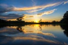Zonsondergang en Bezinning in Amazonië Royalty-vrije Stock Foto's